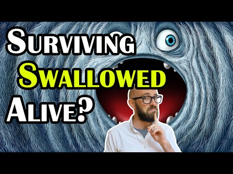 How Do Animals Swallowed Alive Actually Die And Do Any Ever Get Out Alive After?
