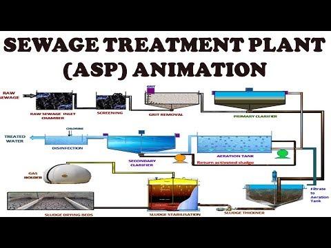SEWAGE TREATMENT PLANT (STP) BASED ON ACTIVATED SLUDGE PROCESS (ASP Process) || STP Animation || ASP