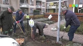 tulpenbollen poten bij zorginstellingen movie/></a>