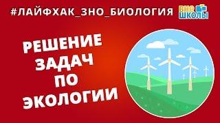Лайфхак_ЗНО_Биология. Решение задач по экологии(, 2017-05-04T11:28:36.000Z)