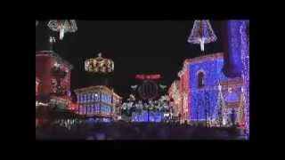 Disney MGM/Hollywood Studios Osborne Family Spectacle of Dancing Lights