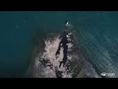 4Ocean Launches New Cleanup Division in Haiti - Unravel Travel TV