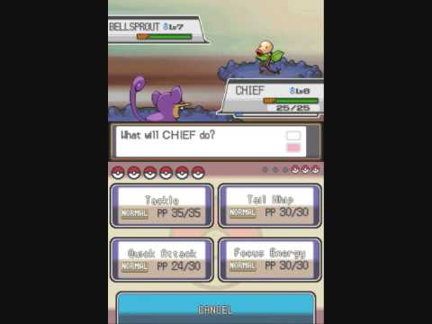 pokemon soul silver how to get flash