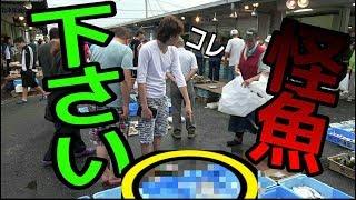 朝市でバケモノ級の魚を買いました!【市場動画】