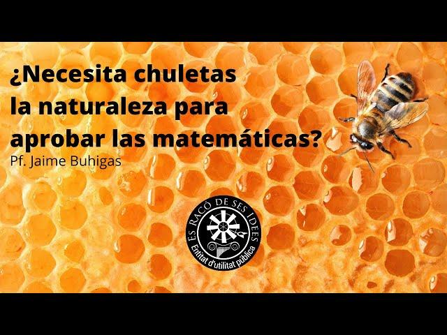 Conferencia (Jaime Buhigas) - ¿Necesita chuletas la naturaleza para aprobar las matemáticas?