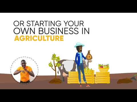 Ways To Excel In Agriculture & Agribusiness