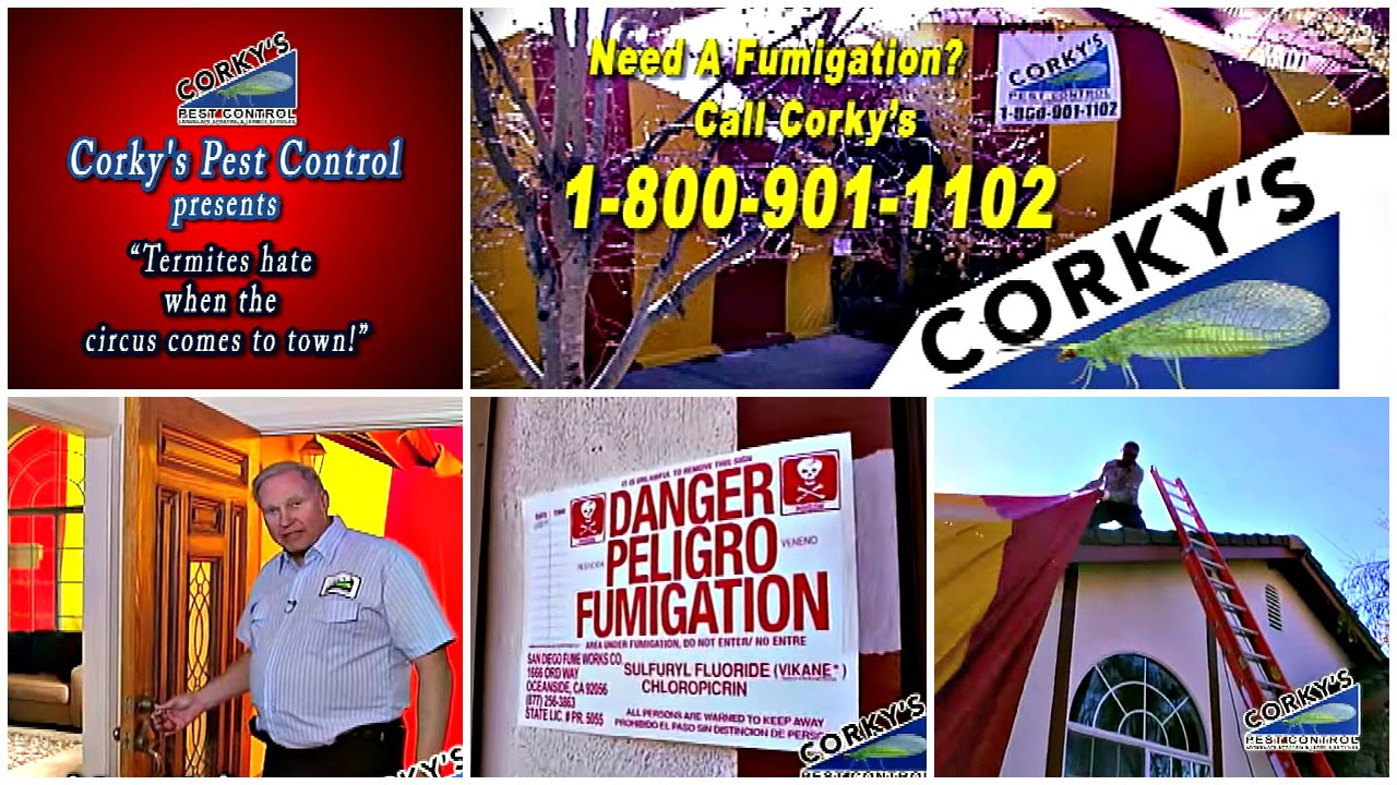 What Goes on Inside a Fumigation Tent?  sc 1 st  YouTube & What Goes on Inside a Fumigation Tent? - YouTube