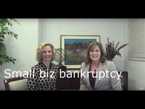 Single Asset and Small Business Bankruptcy -  chapter 11 case types