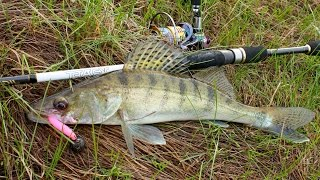 Рыбалка на реке Десна. Весна 2016(Весенняя спиннинговая ловля на реке Десна. Поиск активного хищника на реке. Активный отдых на природе., 2016-05-01T09:44:06.000Z)
