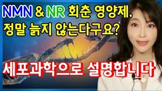 NMN 레스베라트롤 NR:진짜 회춘영양제, 노화치료제 …
