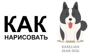 Картинки про собак. КАК НАРИСОВАТЬ СОБАКУ карандашом поэтапно(Как нарисовать собаку поэтапно карандашом для начинающих за короткий промежуток времени. http://youtu.be/F1XO9Zewbyk..., 2015-06-25T07:11:27.000Z)