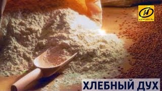 Контуры  Хлебный дух