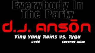 DJ Anson - Everybody In The Party (Ying Yang Twins vs. Tyga)