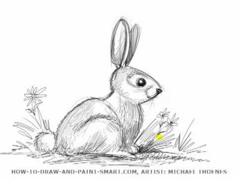 drawing lesson how to draw a rabbit mat youtube