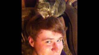Как кошка любит своего хозяина