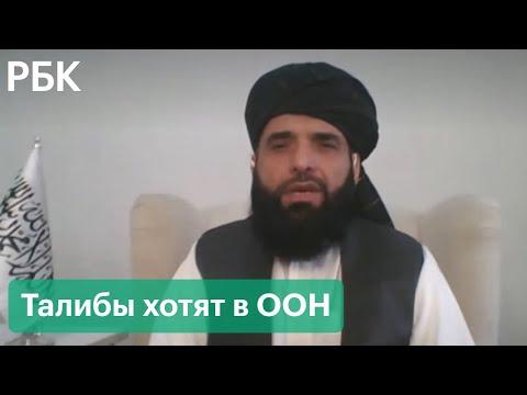 «Талибану» дадут слово в ООН. Исламский эмират предложил постпреда в организации от Афганистана