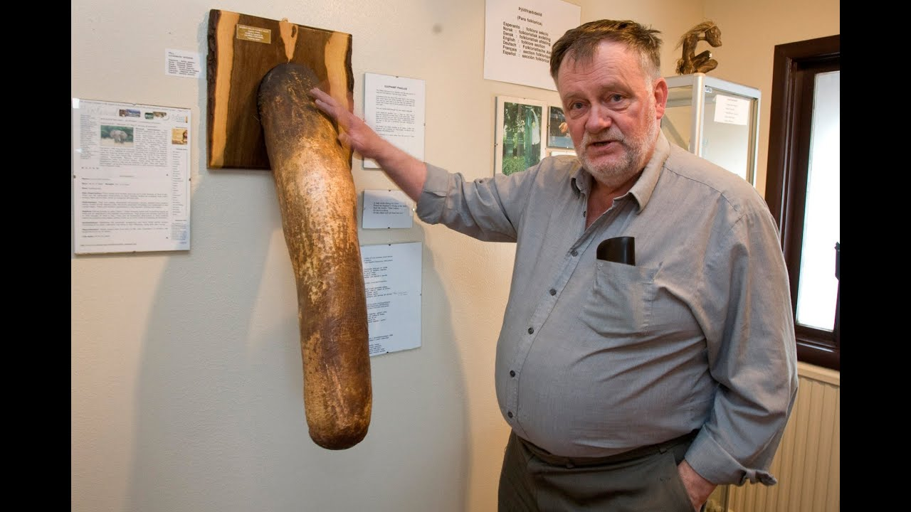 Worlds Largest Penis Museum - Youtube-8417