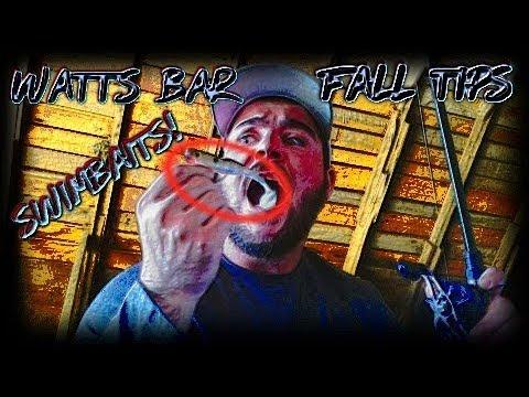 Watts Bar Fall Bass Fishing Tips! - East Tennessee Bass Fishing!