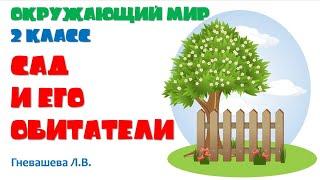Окружающий мир, 2 класс «Сад и его обитатели», Гневашева Л.В.