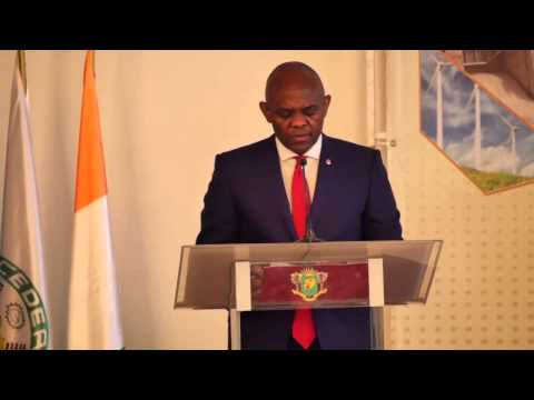 Tony O. Elumelu at the Africa Energy Leaders Group