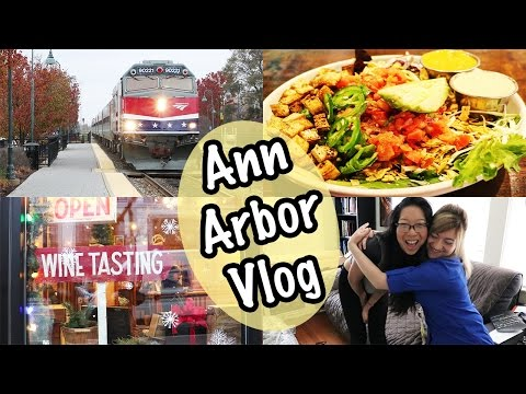 ANN ARBOR MICHIGAN TRAVEL VLOG | Aventura Tapas, The Lunch Room Vegan Food, Literati Bookstore