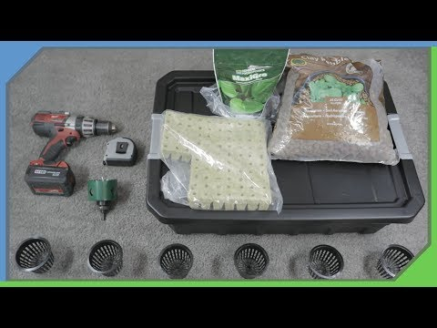 How To Build A (DWC) Deep Water Culture Hydroponic Setup ( Easy and Cheap )