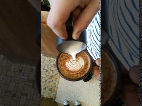SAECO Royal Professional Cappuccino Satz Dichtung komplett Fett AUSWAHL