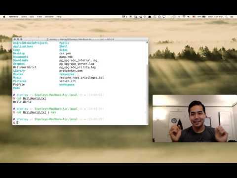 Mastering the Mac Terminal Basics (CLI)