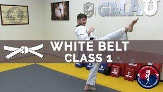 taekwondo-follow-along-class-white-belt-class-1