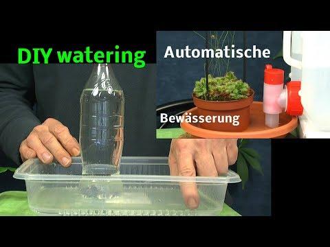 automatische-bewässerung-von-pflanzen-diy-watering-plants-with-bottles