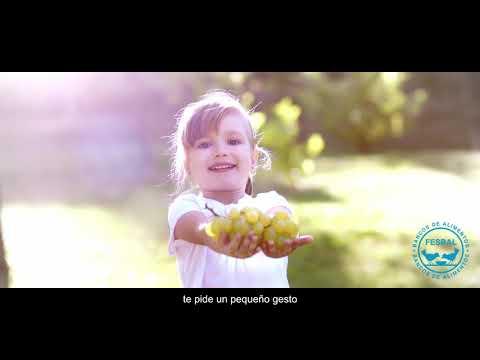 Gran Recogida de Alimentos 1 y 2 de diciembre (II)