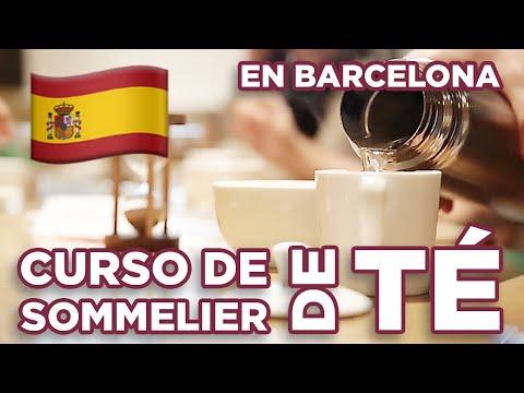 Curso de Sommelier de Té (Camellia sinensis) en Barcelona - El Club del Té