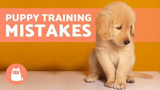8 COMMON MISTAKES WHEN EDUCATING A PUPPY ❌ What to Avoid!