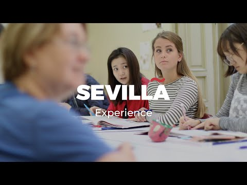 Experience Sevilla with don Quijote Schools
