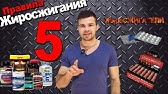 Купить кленбутерол в интернет-аптеке в москве по акции по цене от ⭐ 91 руб. ⭐ инструкция по применению кленбутерол товар дня со скидкой.
