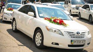 свадебный кортеж белые Тойоты Короллы,аренда авто на свадьбу