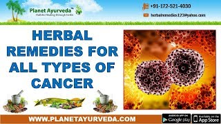Herbal Remedies for All Types of Cancer - Natural Treatment
