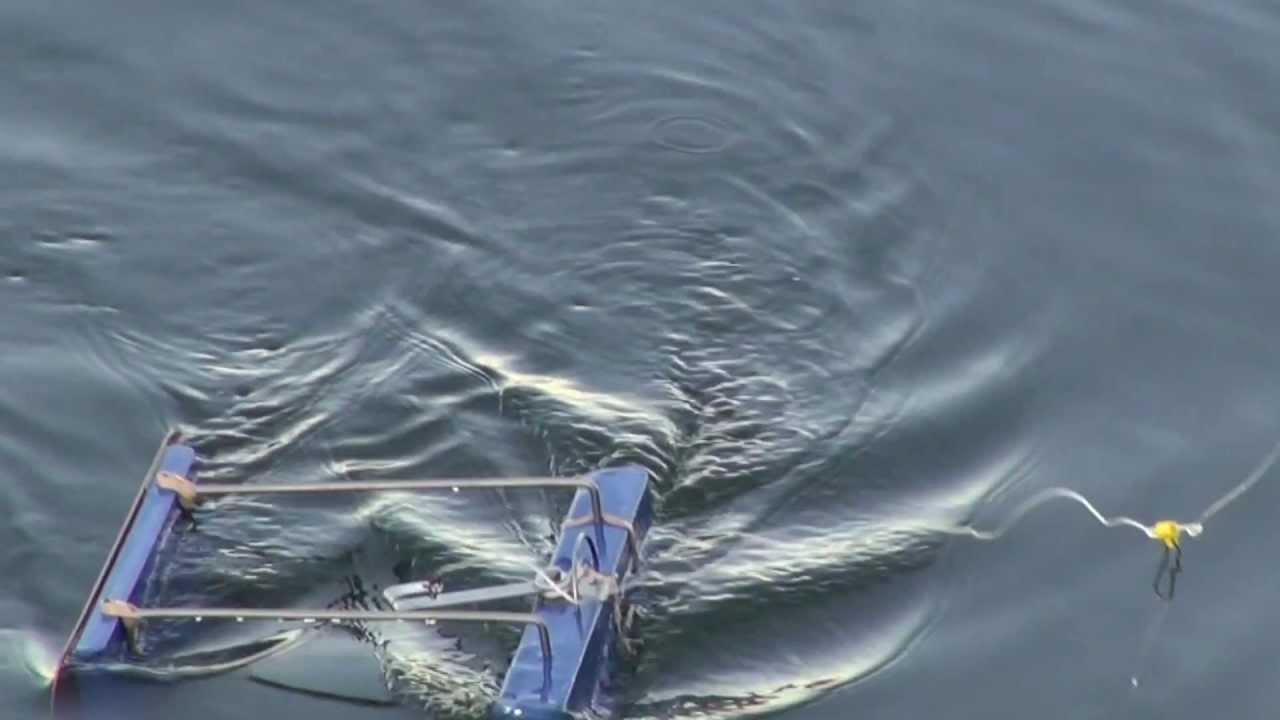 рыбалка кораблик для завоза прикормки