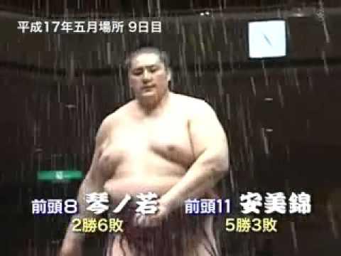 National Art of Sumo volume 9 : 2003 -- 2006