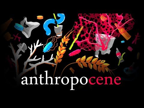 Anthropocene -  The Great Party