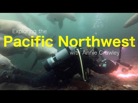 Explore The Pacific