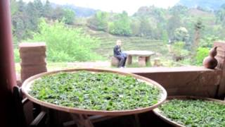 Как применять монастырский чай