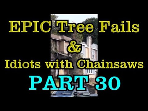 PART 30 - EPIC tree fails around the world compilation & IDIOTS with chainsaws