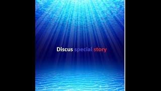 Дискусы (мой опыт)  Выпуск 1