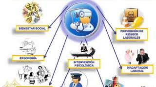 funciones y tareas del psiclogo organizacional 301136 95