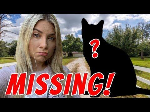 My Pet is MISSING :(