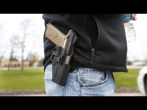 NRA spokesperson Dana Loesch on New Hampshire's 'constitutional carry' law