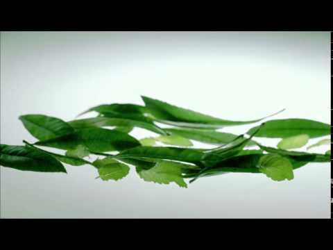 Nin Jiom Herbal Candy - Ingredient TVC