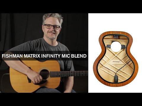New Gear: Fishman Matrix Infinity Mic Blend