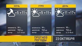 Погода на 23 октября: аномальное, на 10 градусов выше нормы, тепло сохранится